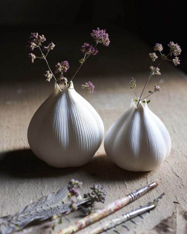 paulviant-photography-brush64garlic