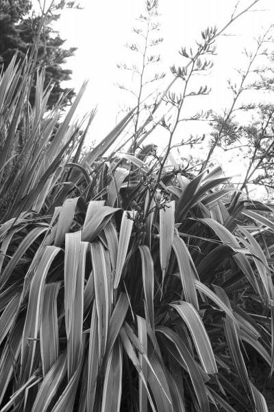 paulviant-photography-coastmagazine4