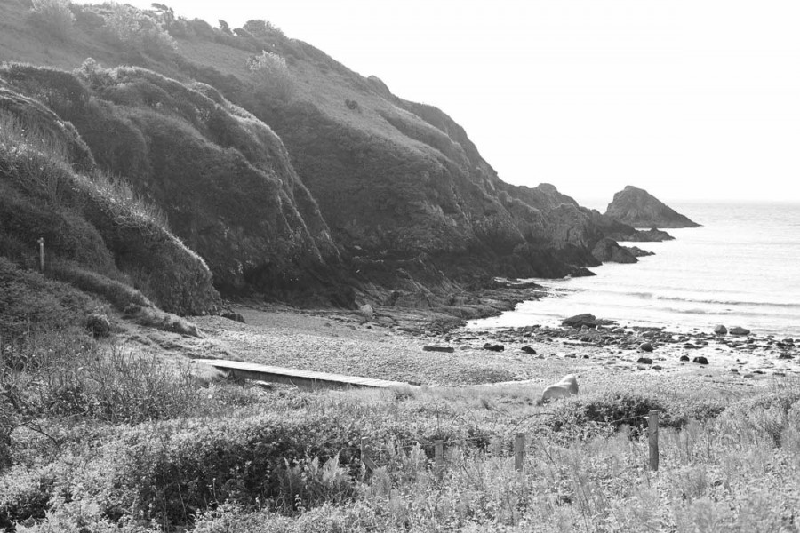 paulviant-photography-coastmagazine8